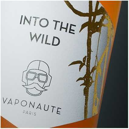 Vaponaute | Into The Wild